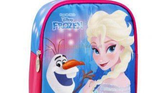 Frozen Elsa En Olaf Rugtas